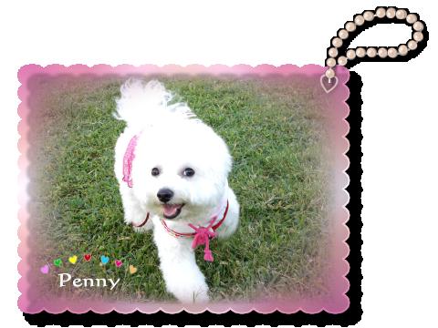 penny02 02