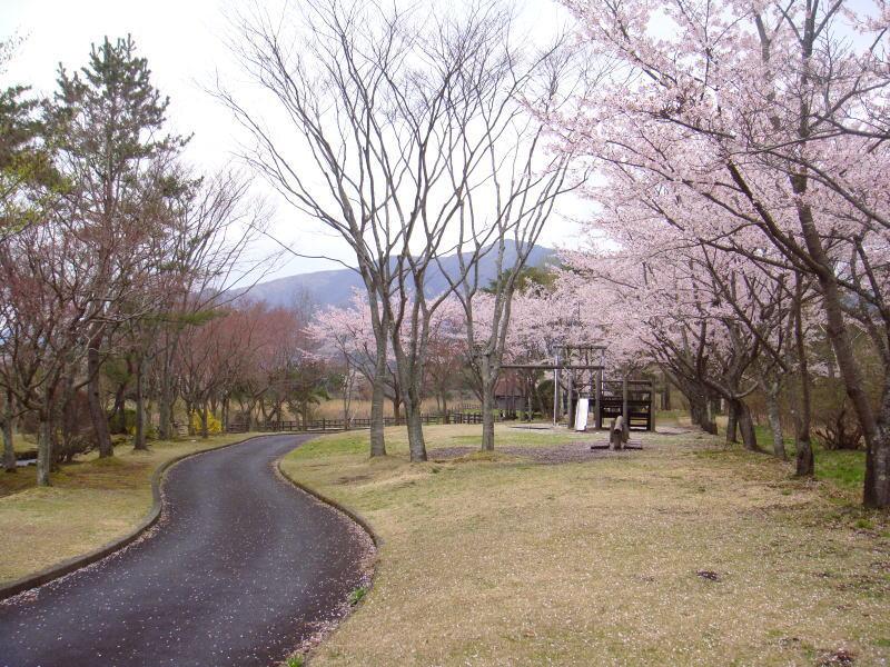 bokujoukouen2.jpg