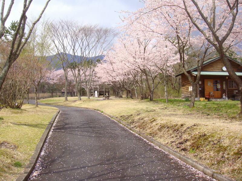 bokujoukouen4.jpg