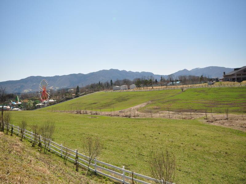 mikigahara3.jpg