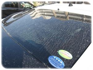 花粉が付いた車