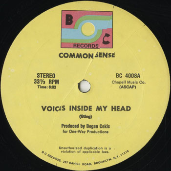 DG_COMMON SENSE_VOICES INSIDE MY HEAD_201312