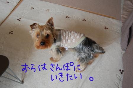 ペロ4_convert_20110419091218