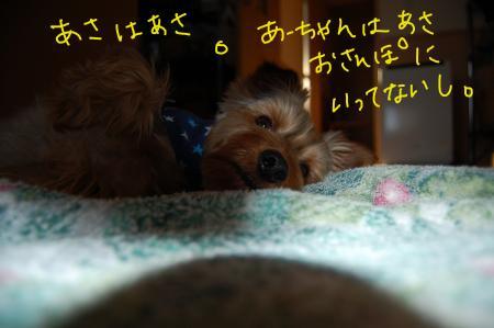 20110512_convert_20110512221735.jpg