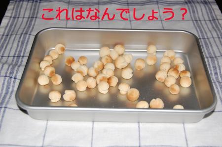 20110611_convert_20110611225755.jpg