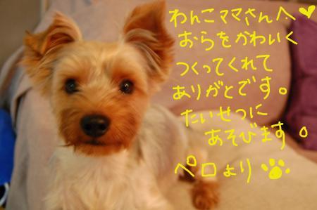 20110701ペロ5_convert_20110702002156