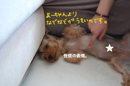 20110705_convert_20110705232844.jpg