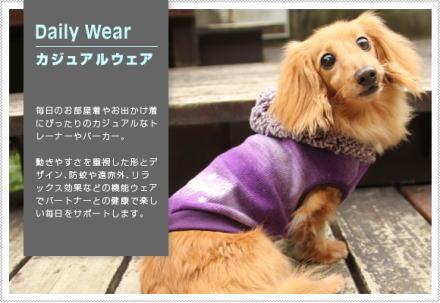 akifuyu20122.jpg