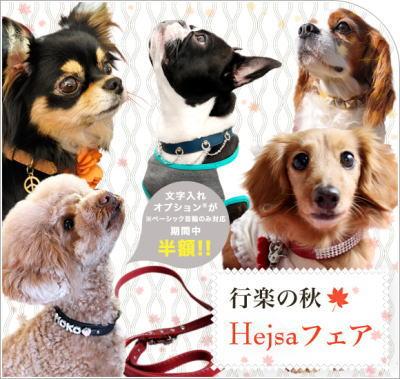 haroharo5.jpg