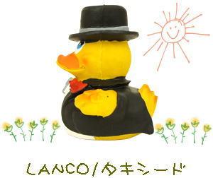 lanco20.jpg
