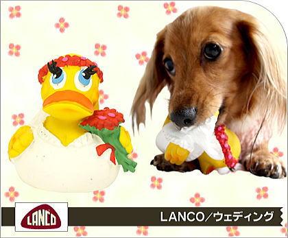 lanco4.jpg