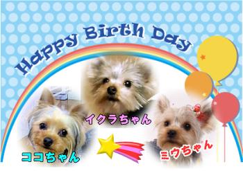 6月15日生まれ