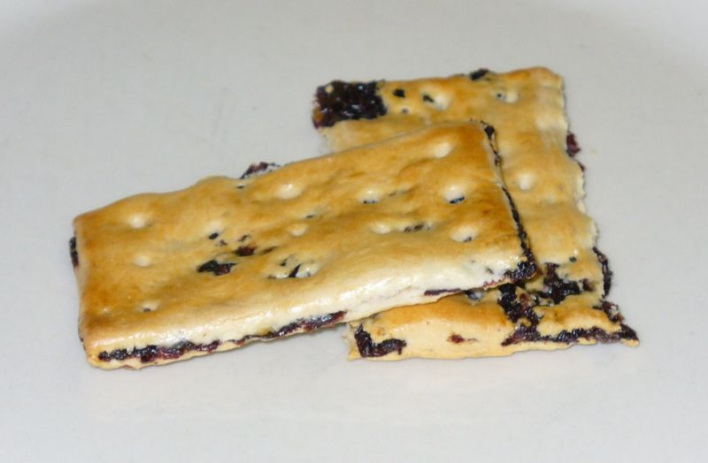 800px-Garibaldi_biscuit[1]