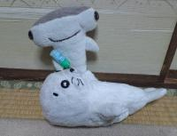 kafunsyou-4