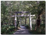 明神神社-1-