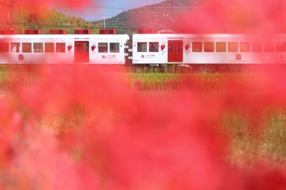 2014/9/23 和歌山電鐵貴志川線 伊太祈曽