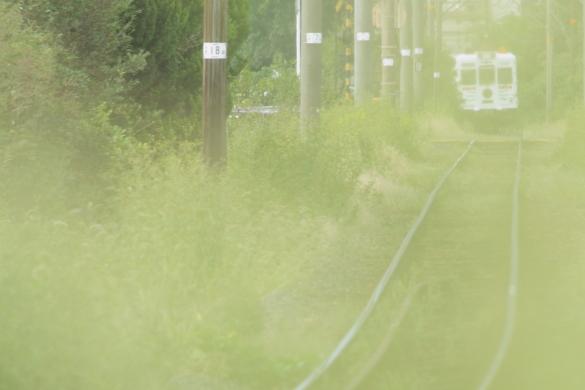 2014/10/01 和歌山電鐵貴志川線 甘露寺前~貴志