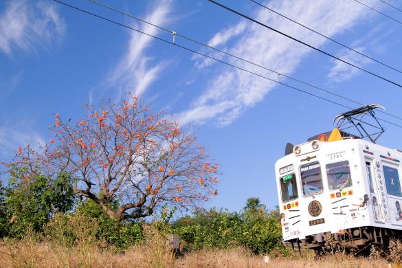 2014/10/18 和歌山電鐵貴志川線 貴志