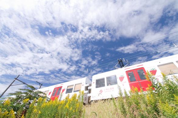 2014/10/25 和歌山電鐵貴志川線 山東~大池遊園
