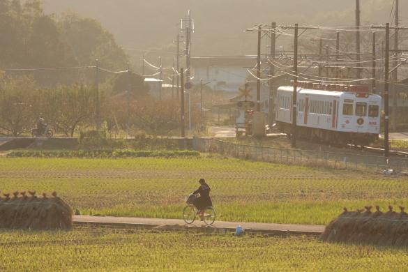 2008年11月 和歌山電鐵貴志川線 大池遊園