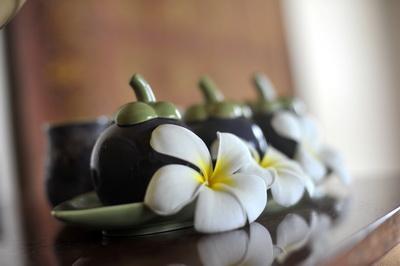 Golden Tulip Mangosteen Ayurveda Health Spa Phuket Thailand (5)