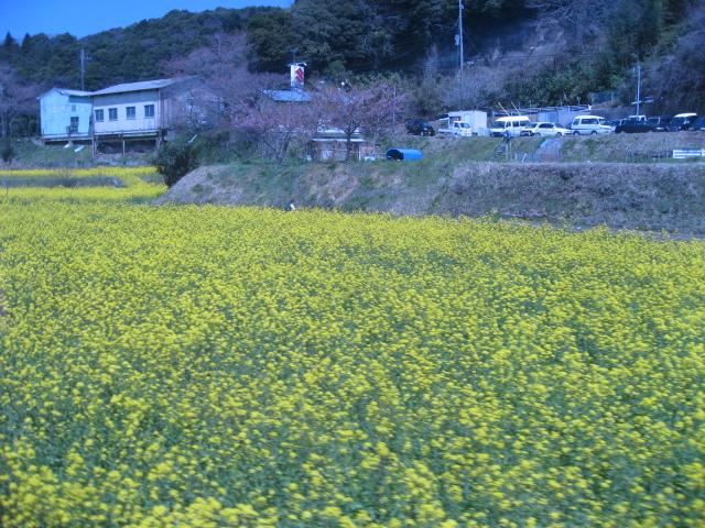 中村写真2 121