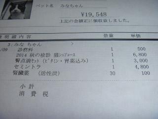 P1040249(1).jpg