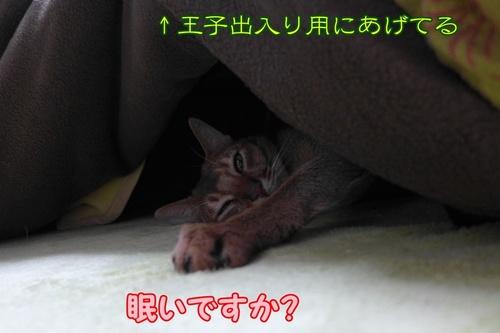 眠いっすわ