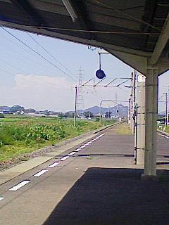 NEC_0252.jpg
