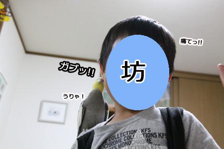 IMG_p5781.jpg