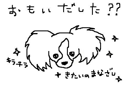 yuzu1112d.jpg