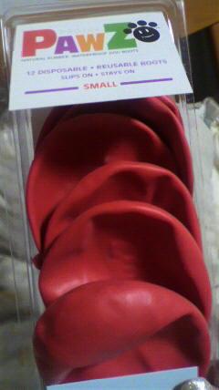 ホーリィの安全靴