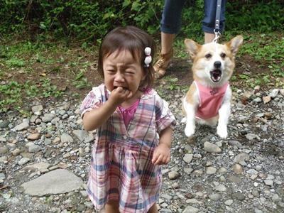 20120908 020 泣く・吠える