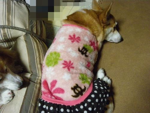 2012冬服に衣替え 002