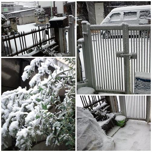 20130114 大雪