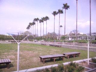 長居公園2