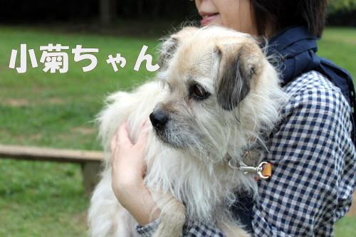 2011.10.8-10.11 kyushu 2 0067