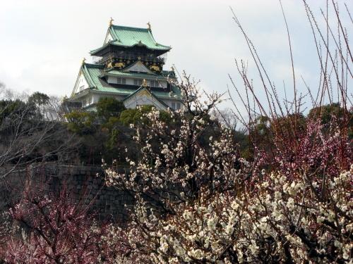 2012.3.13 大阪城梅林 0003