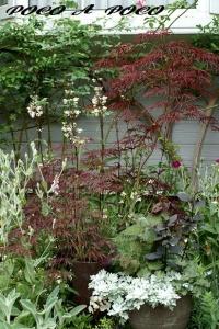 ボーダー花壇3