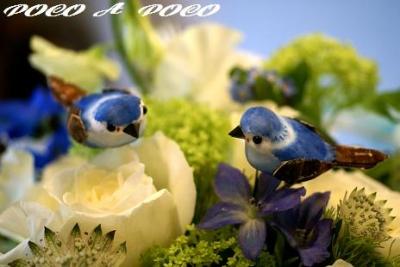 青い鳥アレンジ