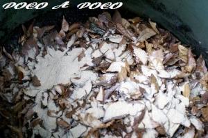 馬糞堆肥1
