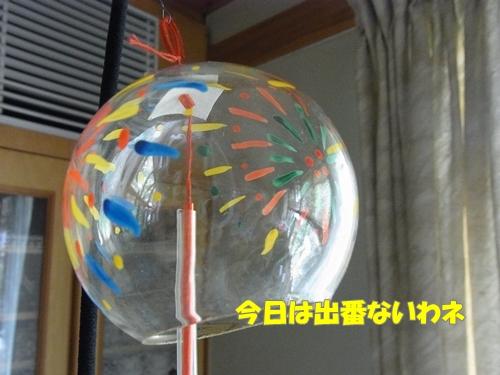 RIMG0794_20120721003346.jpg