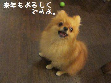 IMG_5172.jpg