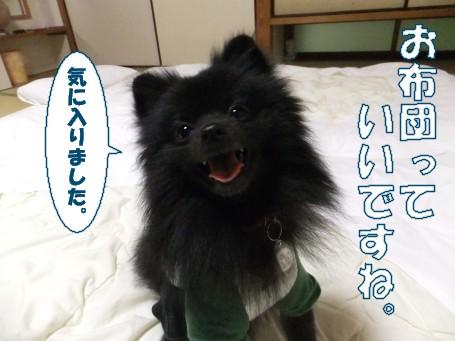 20110507_11.jpg