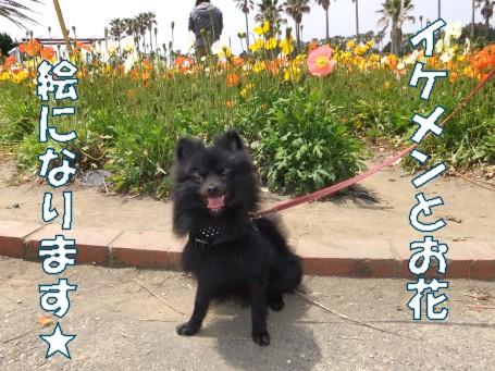 20110508_10.jpg
