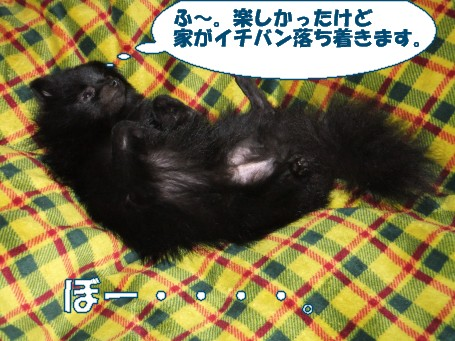 20110509_10.jpg