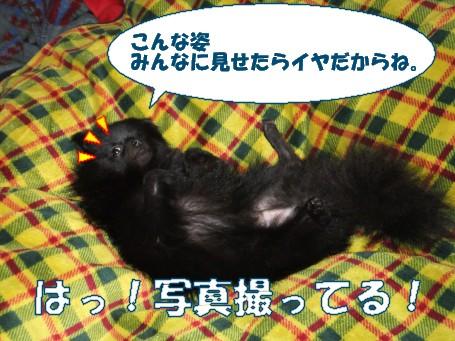 20110509_11.jpg