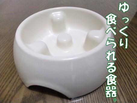 20110511_2.jpg