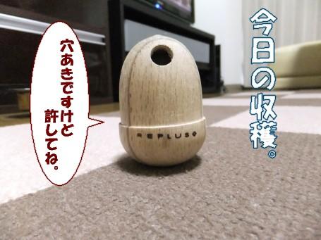 20110515_3.jpg