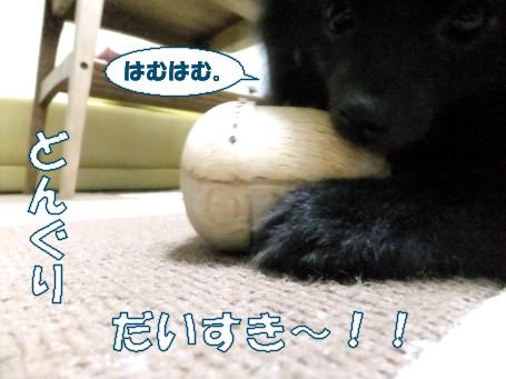 20110515_7.jpg